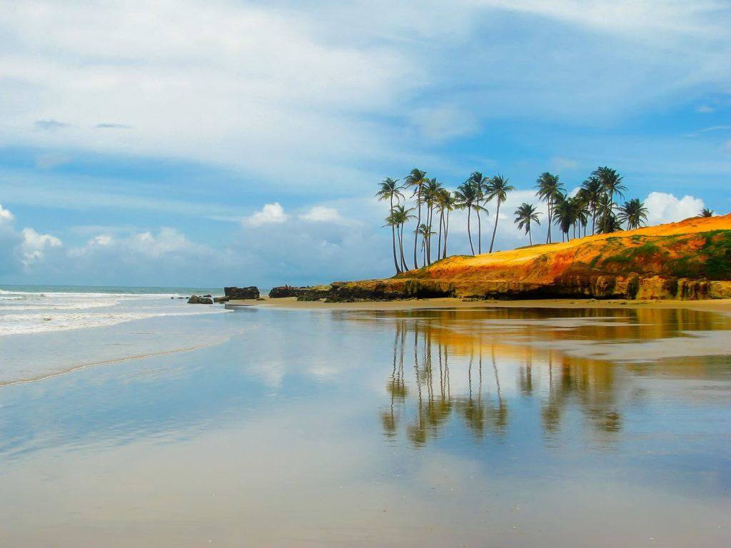 Plage au Brésil avec palmiers
