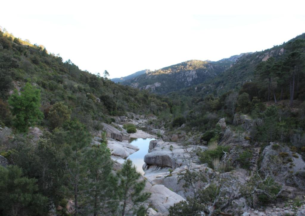 Une rivière serpente au milieu des rochers en Corse