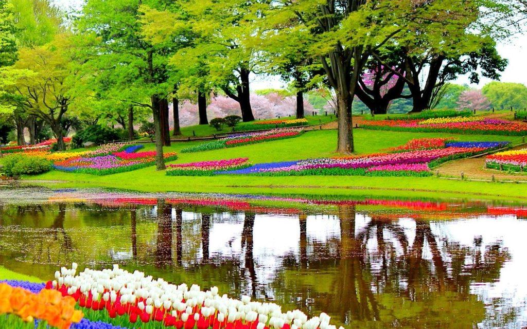 Les jardins fleuris de tulipes de Keukenhof aux Pays-Bas