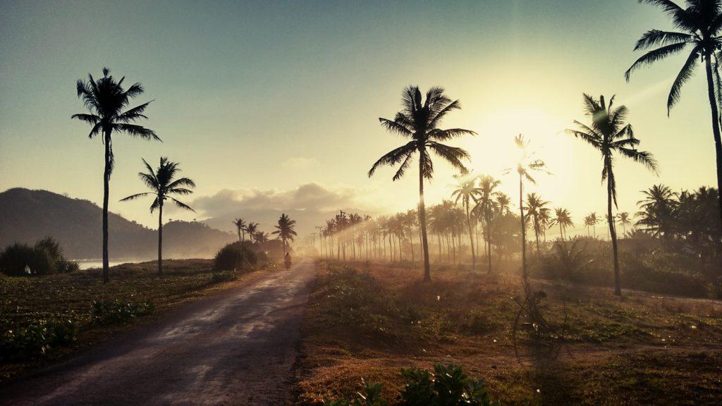 Une route sur l'île de Java en Indonésie
