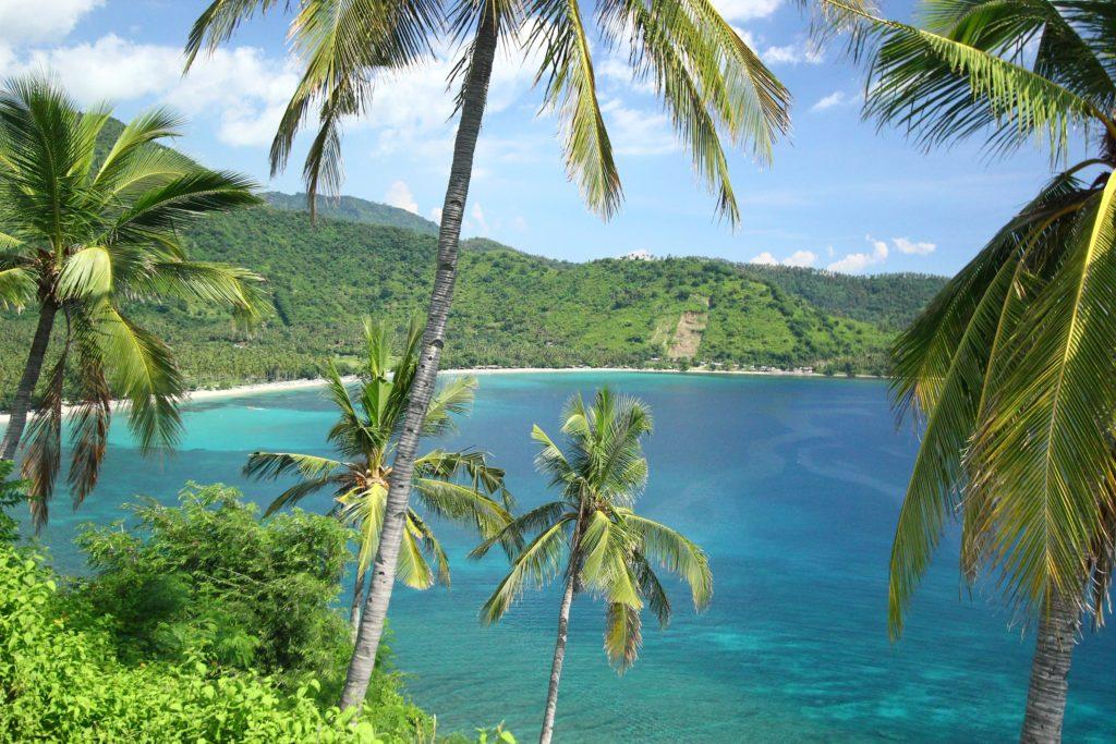 Palmiers et plages à West Nusa Tenggara à Lombok en Indonésie