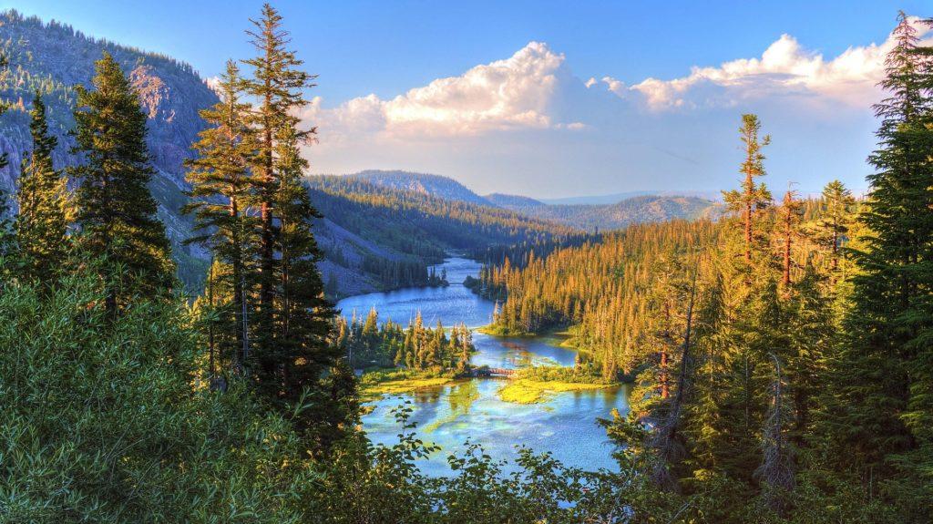 Paysage de montagne, forêt et lac